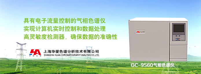 GC-9560气相色谱仪