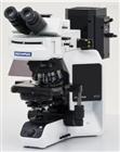 镜之最!奥林巴斯BX53显微镜