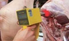 OPTO-STAR/OPTO-STAR CPU德国MATTHAUS肉色测定仪