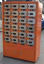 PTTRX-24PT新型土壤干燥箱(单独控制)
