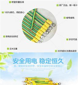 太阳能光伏板接地线6平方黄绿BVR6