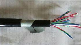 市内通信电缆 HYA大对数语音电缆2对