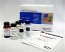 美国RD试剂抗体特价销售代理商 全国总代
