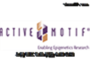 Active Motif 抗体 抗原 试剂盒 全国总代