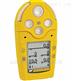 加拿大BW手持式VOC氣體檢測儀