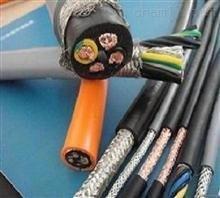 龙泉市-DJFVP32通信电缆