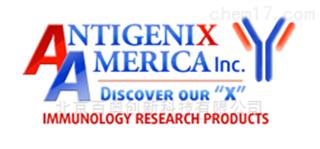 Antigenix America全国代理