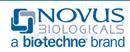 Novus Biologicals抗体试剂销售代理