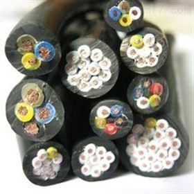 铠装电缆天联供应ZR-DJFVRP高温屏蔽电缆