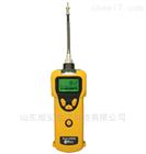 PGM-1600便携式可燃气体检测仪