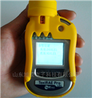 ToxiRAE Pro PIDPGM-1800手持式PID气体检测仪
