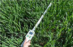 植物冠层测定仪(植物生理仪器)