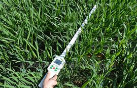 JC- PAR植物冠层测定仪(植物生理仪器)