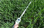 植物冠层测定仪
