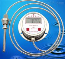 DTM491数显电接点温度计