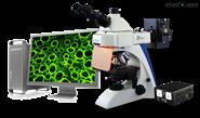 奥特BK-FL熒光顯微鏡