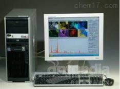 Genesis XM系列X射线能谱仪(EDX)