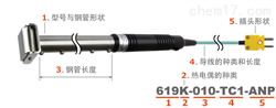 日本安立计器温度传感器Model619/620/621