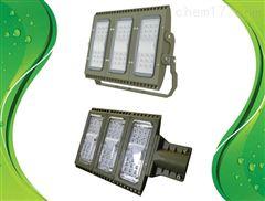 通明电器 ZY8102-L100 LED泛光灯具 含支架F