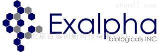 Exalpha授权代理