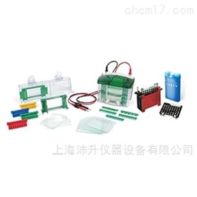 165-8029伯乐Bio-Rad小型垂直槽及转印系统