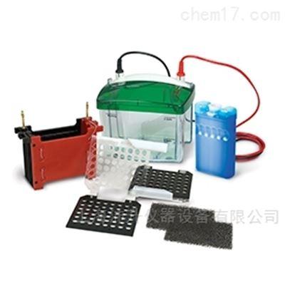 170-3930伯乐Bio-Rad小型转印槽