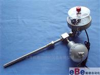 WSSX-486WSSX-484 WSSX-485万向型电接点温度计