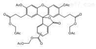 pH的荧光染料CAS:117464-70-7,BCECF AM荧光探针