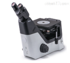 尼康显微镜MA-100