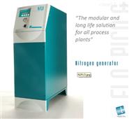 Claind 大流量高纯氮气发生器
