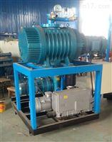 真空泵电力用抽真空装置承装修试资质用设备