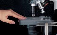 尼康Nikon E200正置生物显微镜的图像测量