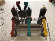 啟軒ZW32-12G/630-25永磁雙機構真空斷路器
