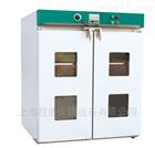 DHG大型电热鼓风干燥箱