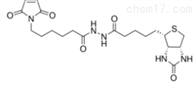 生物素马来酰亚胺Biotin-Maleimide/Biotin-Mal点击化学