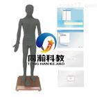 THZY2212多媒體人體點穴考試系統|針灸