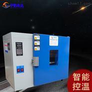 塑料干燥高温烘箱 工业高温干燥箱厂家