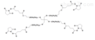 PEG衍生物4 arm PEG SG四臂PEG琥珀酰亚胺戊二酸酯