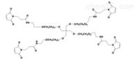 修饰蛋白质4 arm PEG Mal四臂聚乙二醇马来酰亚胺