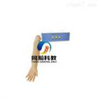 TAH/CGD151成人动脉穿刺操作模型