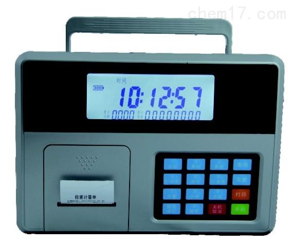 吊秤无线显示仪表CII表