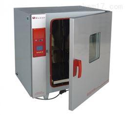 BGZ-146高校科研电热鼓风干燥箱 恒温试验箱