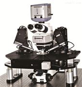 MMTP正置顯微鏡平臺