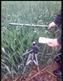 冠層葉面積指數測定儀SYE-GG05