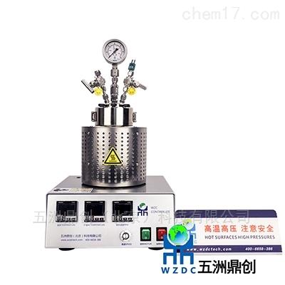 WZC100催化反应釜实验室高压釜