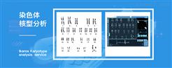 iCell-006染色體核型分析常用的方法