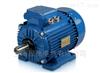FFD 2DIPG电动机奥地利FFD电机/电动机