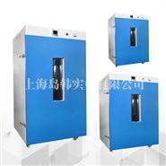 DHG-9645A立式300°电热恒温鼓风干懆箱 立式干燥箱 老化箱价格