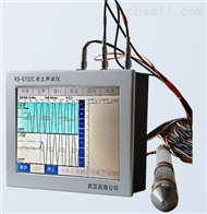 RS-ST02CRS-ST02C岩土声波检测仪