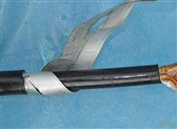 MKVV22    10*2.5煤矿用/控制电缆 MKVV22